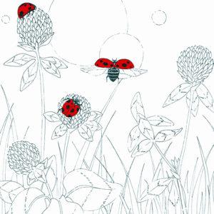 illustration_spring