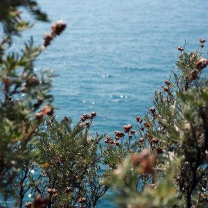 vue_mer_jardins_rayol