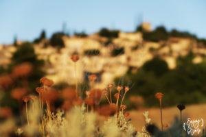 paysage_mirmande