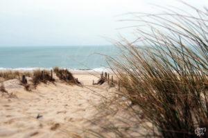 plage-lacanau-sud-ouest-hiver