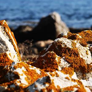 Par delà les rochers